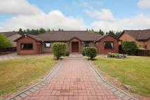 2 Beechwood Park Bungalow for sale