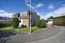 property for sale in 8 Westfield, , Dumbarton, G82 4JR