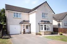 Detached property for sale in 26 Delph Wynd, Tullibody...
