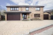 4 bed Detached house for sale in 174 Langton View...