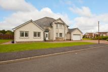 Detached property in 12 Hamilton Way...