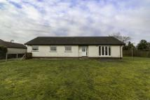 Bungalow for sale in Quarryford...