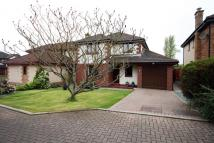 Detached property for sale in 18 Westhall Crescent...