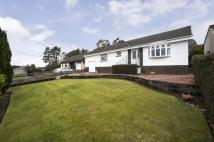 3 bed Bungalow for sale in 6 Hunters Way, Holmhead...