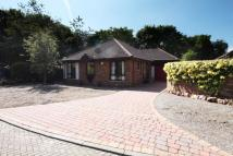 3 bed Bungalow for sale in 13  Laurieston Park...