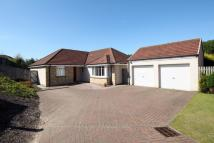 Bungalow for sale in 23 Cobden Court...