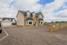 5 bedroom Detached house for sale in Waterlands Road, Law...