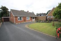 Bungalow for sale in Baxter Close, Hingham