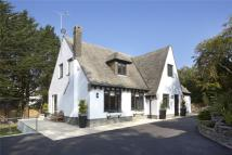 Detached home for sale in Haldon Road, Torquay...