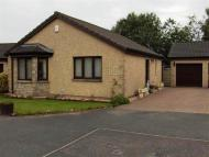 Bungalow to rent in Durie Bank, Windygates...