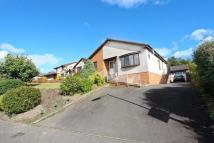 Detached Bungalow for sale in Balgeddie Gardens...