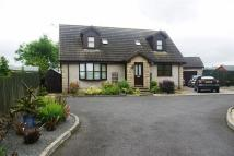Detached property in Proudfoot Court...