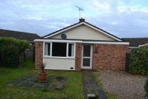 Detached Bungalow to rent in Tracey Road, Norwich