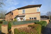 3 bedroom Link Detached House to rent in Tottington Close...