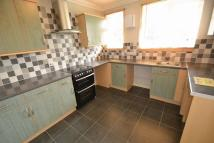 Gertrude Road Flat to rent
