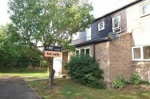 Ground Maisonette to rent in Pipers Close, Haverhill...