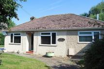Detached Bungalow in Withersfield Road...