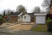 Detached Bungalow in Beaumont Court...