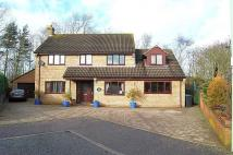 Laurel Close Detached property for sale