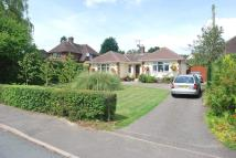Detached Bungalow for sale in HILL CRESCENT, Haverhill...