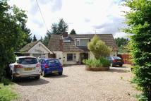 8 bedroom Detached house for sale in Mill Road, Kedington, CB9