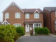 3 bedroom property to rent in Rhodfa Flint...