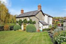 3 bedroom Detached house for sale in Lydbury North