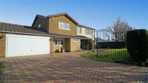 Detached property for sale in Earnshaw Way...