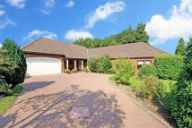 5 bedroom Detached house for sale in Westgate Close...