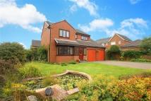 Detached property for sale in Turnberry, Whitley Bay...