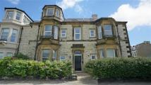 2 bed Flat in Percy Park Road...