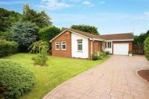Bungalow for sale in Claverley Drive...