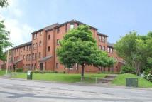 Flat to rent in Caird Street, Hamilton