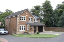 4 bedroom Detached house to rent in Manus Duddy Court...