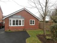 3 bed Detached Bungalow to rent in George Street, Chester...