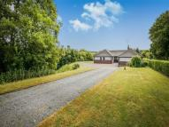 Detached Bungalow to rent in Besom Cote Ffordd...