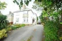Falmouth Detached house to rent