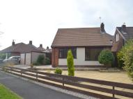 Detached Bungalow to rent in Brookside Road, Fulwood...