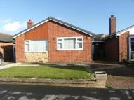 Bungalow to rent in Ashbourne Crescent...