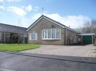Bungalow to rent in Sandringham Close, Haxby...