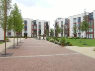2 bed Flat to rent in Lauriston Close...