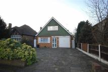 Detached Bungalow to rent in Eastcote Pinner