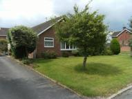 Bungalow to rent in Elmore Close...