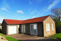 Detached Bungalow for sale in Willow Close, Seaton