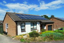2 bed Detached Bungalow for sale in Maple Close, Seaton
