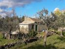 Farm Land in Beira Baixa, Penamacor for sale