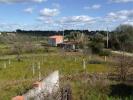 Land for sale in Beira Baixa...