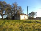 Farm Land in Idanha-a-Nova for sale