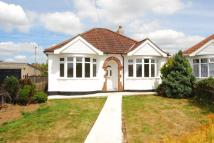Semi-Detached Bungalow in Laburnum Grove, Bristol