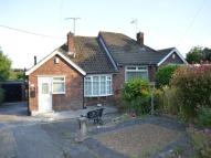Semi-Detached Bungalow to rent in Bradgate Close...